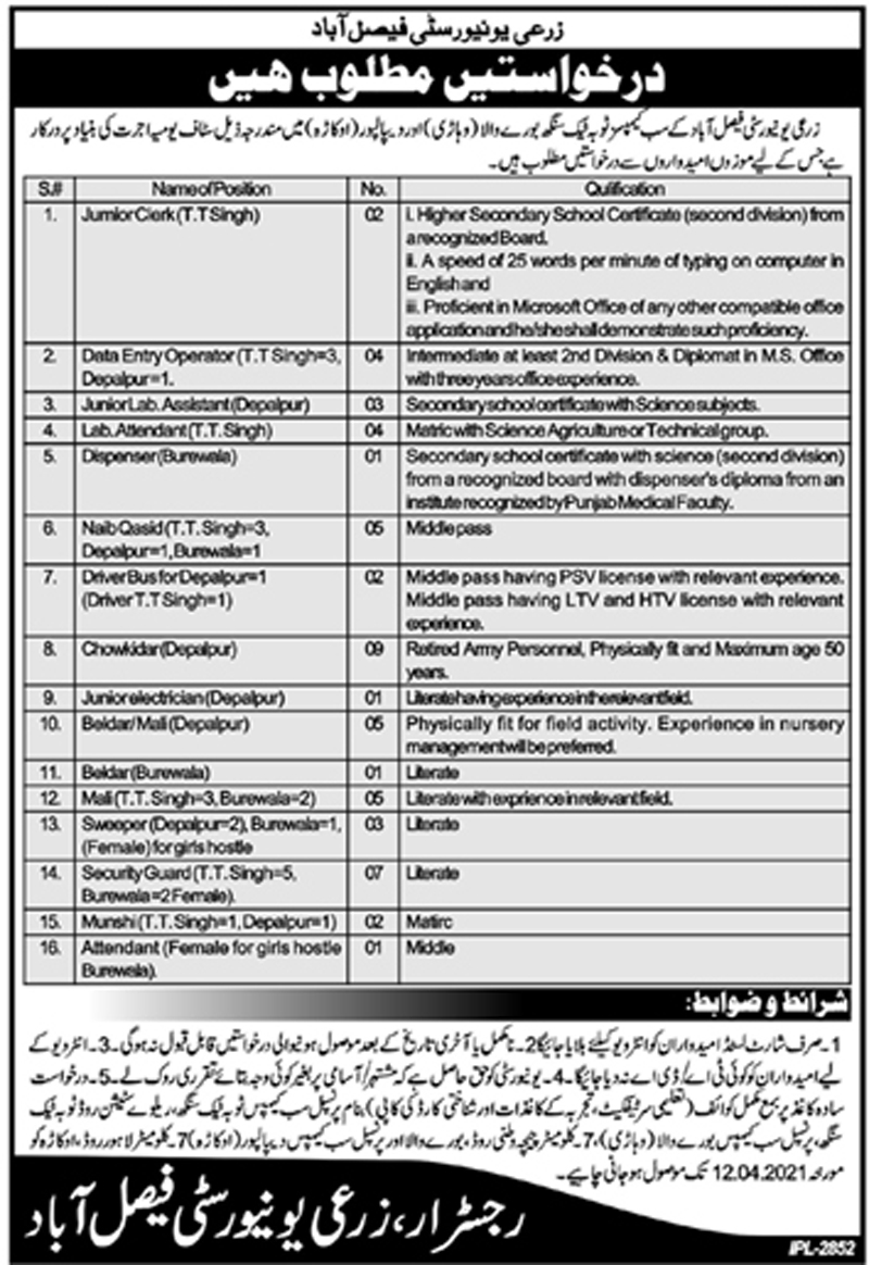 Agriculture University Faisalabad Jobs March 2021